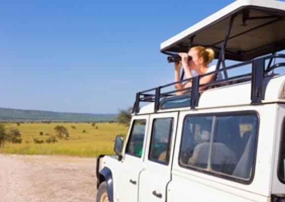 What accessories should you have on your next road trip?